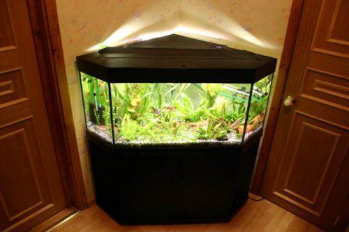 Угловые аквариумы